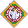 Unisex Teambrown Homestead Grays Champions Collection Longsleeve Baseball Shirt