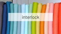 interlock2.jpg