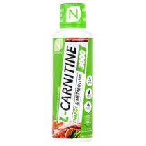 L-carnitine 3000, Delicious Watermelon, 16 FL OZ