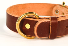 DR. DUCK CO. X HOLDFAST RANGER LEATHER DOG COLLAR