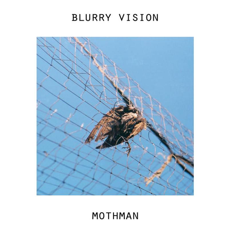 "RF001 Blurry Vision/Mothman Split 7"""
