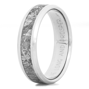 Men's Beveled Edge Titanium Gibeon Meteorite Ring