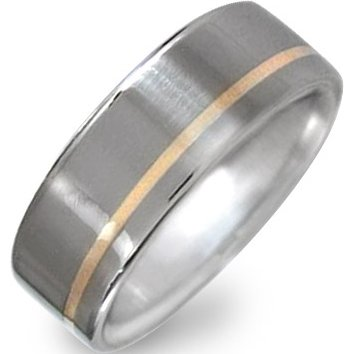 Offset Titanium Gold Inlay Ring