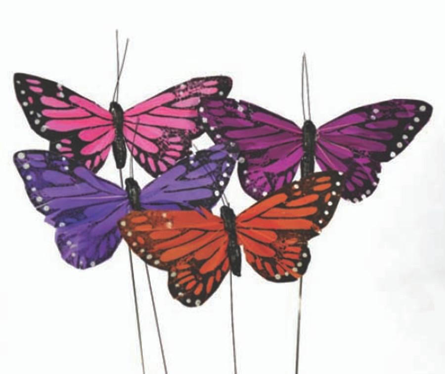 Butterfly Asst LARGE 1DZ #DP1009