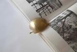Brass Apple Slice Book + Paperweight