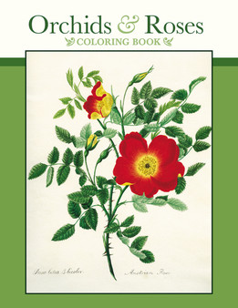 Pomegranate Coloring Book Orchids & Roses