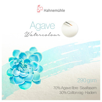 """Hahnemuhle Agave Watercolor Single Sheet 50X65cm (19.5x25.5"""")"""