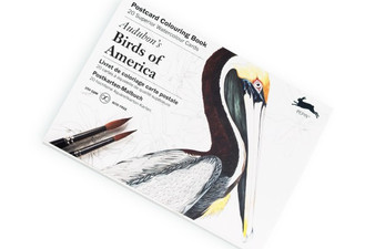 Pepin Postcard Colouring Book Audubon Birds of America