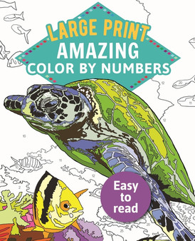 Amazing Color by Numbers Large Print