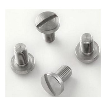GOVT. MODEL SCREWS (4) SLOTTED, UPC :743108450185