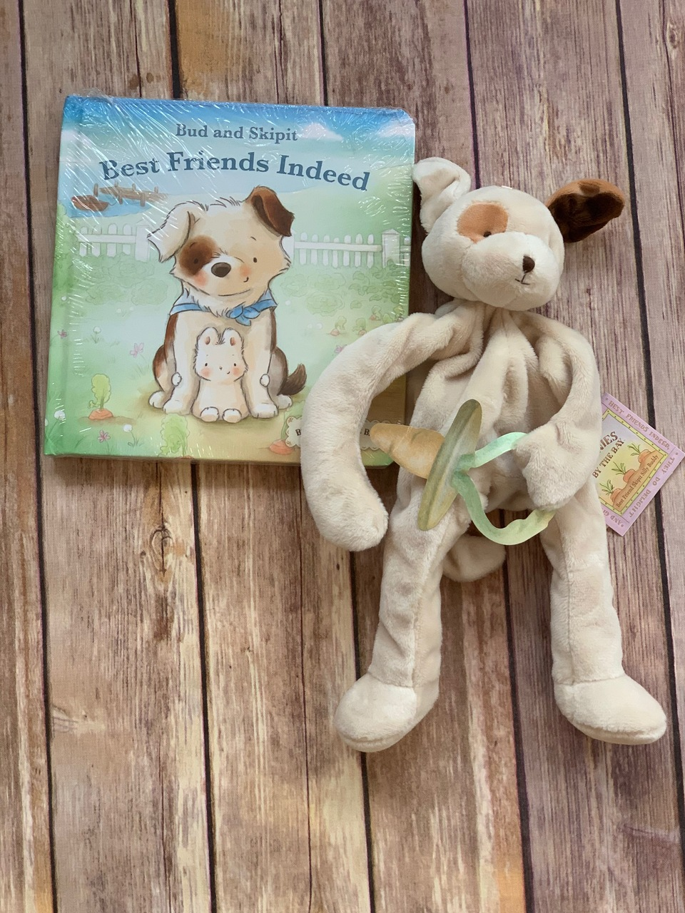 Add a Book and Buddy -Bud and Skipit.  Great addition to this wonderful pillow.  Wicked Stitches Gifts.