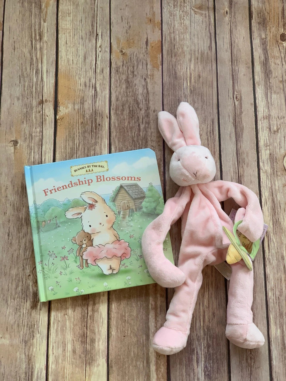 Add a book and a binkie buddy pacifier holder!  Wonderful items made by Bunnies by the Bay - Wicked Stitches Gifts.