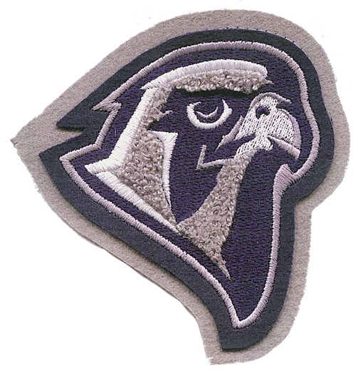 Lifegate Christian School Falcon