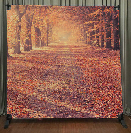 8x8 Printed Tension fabric backdrop - Autumn Road | PB Backdrops