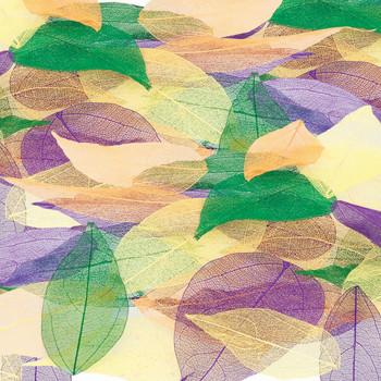 Skeleton Leaves - Coloured (Pack of 100)
