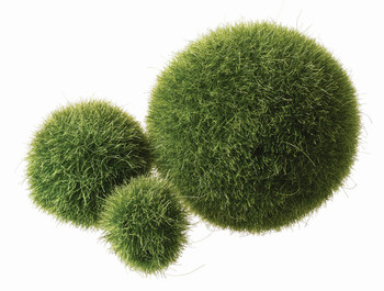 Textured Fuzzy Poly Balls - Pack of 12