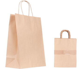Paper Bag with Handle - 33 x 25.5cm (Pack of 10)