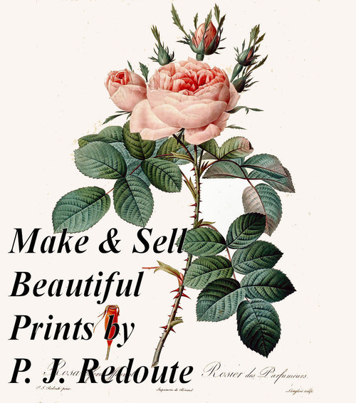 P. J. REDOUTE Illustrations - High Resolution Printmaking Images Download