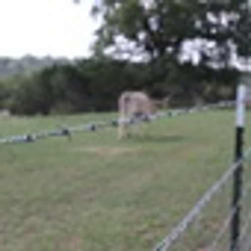Bekaert High Tensile Barbed Wire 15.5 Gaucho Roll