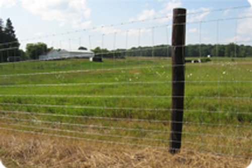 Bekaert 1047-6-11 Classic Field Fencing Roll