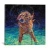 iCanvas ''Moonlight Swim'' by Iris Scott Gallery-Wrapped Canvas Print~IRS114-1PC3