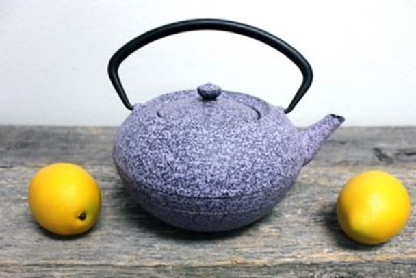 Studio Cast Iron Teapot-2237506