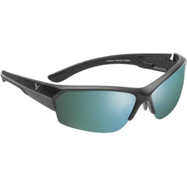 Raptor Sunglasses - Matte Black-4036732
