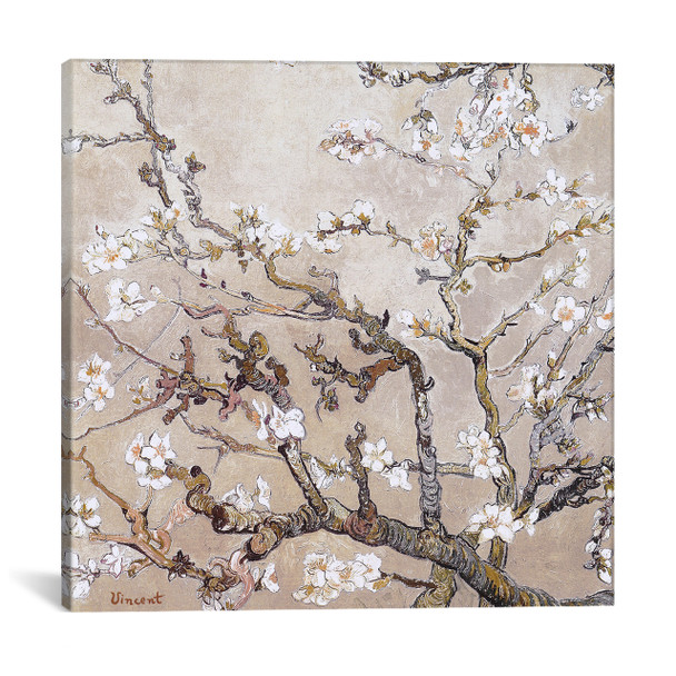 iCanvas ''Almond Branches In Bloom San Remy, C. 1890 (tan)'' by Vincent van Gogh Gallery-Wrapped Canvas Print~1325-1PC3