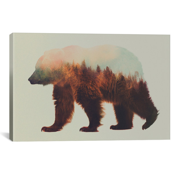 iCanvas ''Bjorn'' by Andreas Lie Gallery-Wrapped Canvas Print~ALE38-1PC3