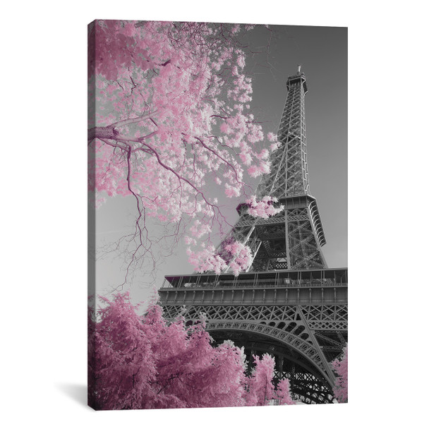 iCanvas ''Paris Eiffel Tower XIII'' by David Clapp Gallery-Wrapped Canvas Print~DCL71-1PC3