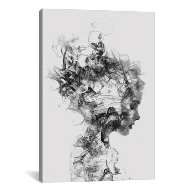 iCanvas ''Dissolve Me'' by Daniel Taylor Gallery-Wrapped Canvas Print~DTA11-1PC3