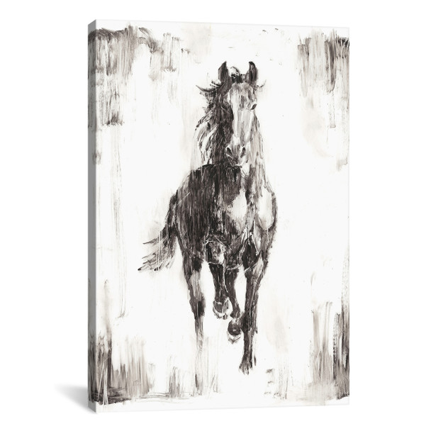 iCanvas ''Rustic Black Stallion I'' by Ethan Harper Gallery-Wrapped Canvas Print~EHA437-1PC3