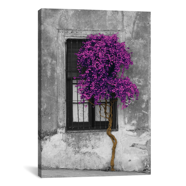 iCanvas ''Tree in Front of Window Purple Pop Color Pop'' by Panoramic Images Gallery-Wrapped Canvas Print~ICA1207-1PC3