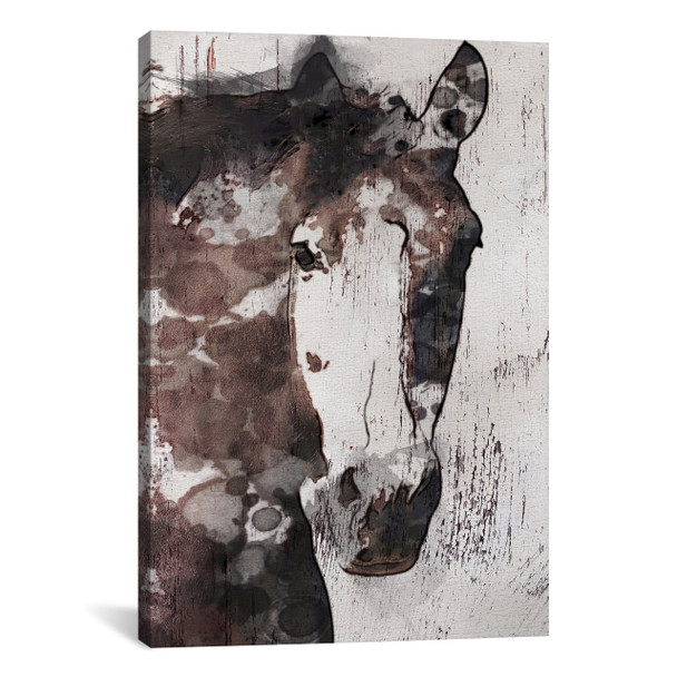 iCanvas ''Gorgeous Horse IV'' by Irena Orlov Gallery-Wrapped Canvas Print~ORL21-1PC3