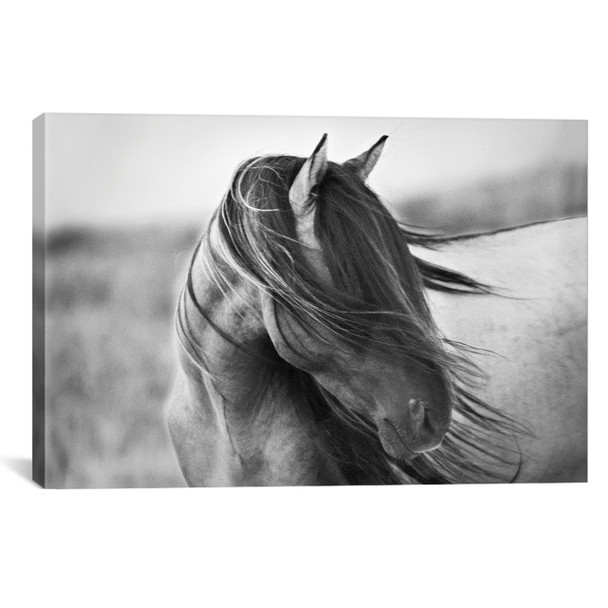 iCanvas ''Fierce Grace'' by Tony Stromberg Gallery-Wrapped Canvas Print~TST7-1PC3