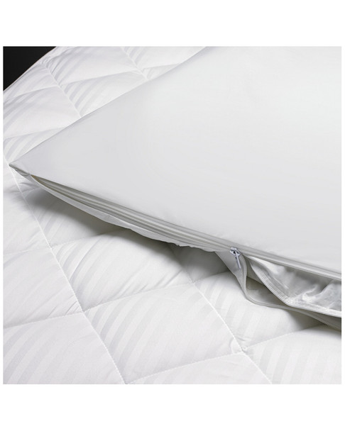 W Hotels 2pc Featherbed & Protector Set~3030490146