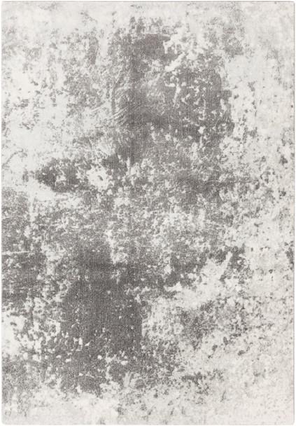 Aberdine Antique Wash Charcoal Gray and Ivory Rug~ABE8013