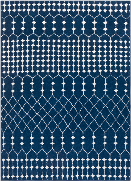 Bahar Farmhouse Navy Blue and Beige Rug~BHR2314