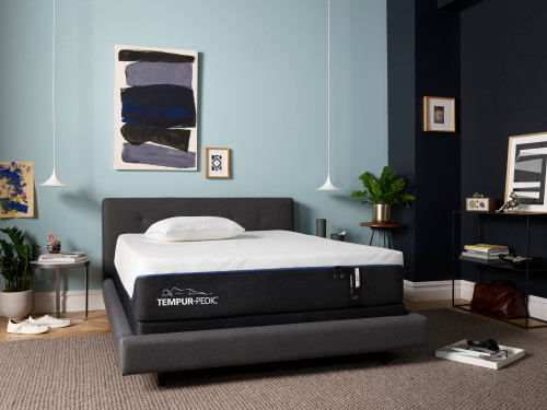 ProAdapt - Plush by Tempur-Pedic available at Swann's Furniture in Tyler, TX