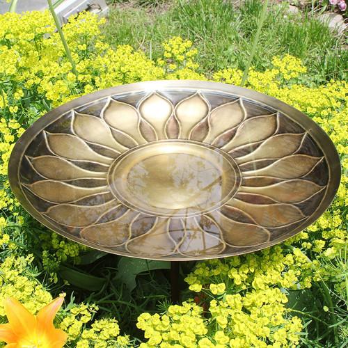 African Daisy Bird Bath Bowl