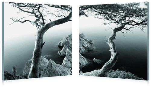Baxton Studio Rocky Shore Mounted Photography Print Diptych