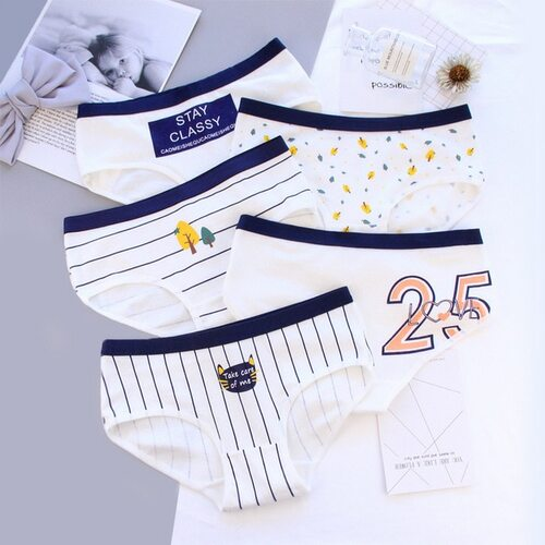 Women's briefs cotton panties sexy