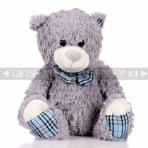 "14"" Einstein Bear With Scarf Soft Plush Toy Stuffed Animal - Gray - Image 1"