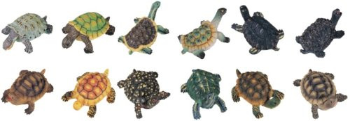 Turtles Set of 12 Collectible Tortoise Figurine Reptile Statue Figure