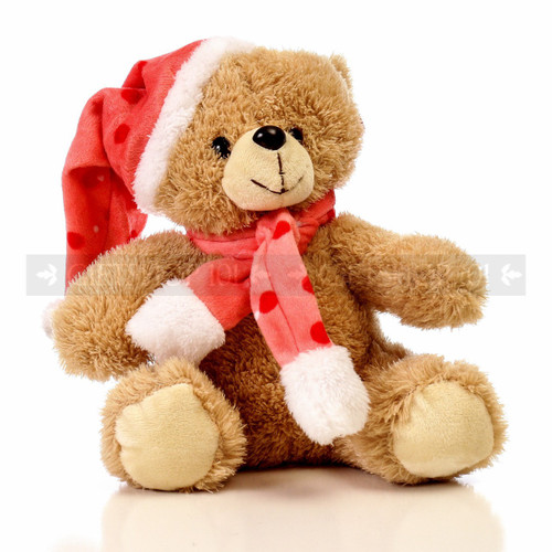 """9"""" Gibby Bear With Hat & Scarf Soft Plush Toy Stuffed Animal  - Pink - Image 1"""