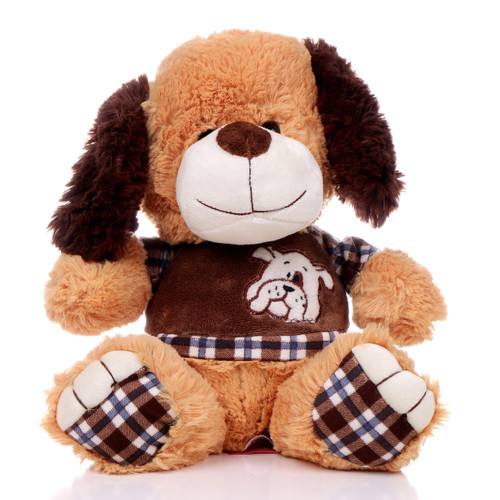 "11"" Amelia Dog with Shirt - Brown (Front)"
