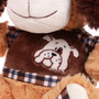 "11"" Amelia Dog with Shirt - Brown (Detail)"