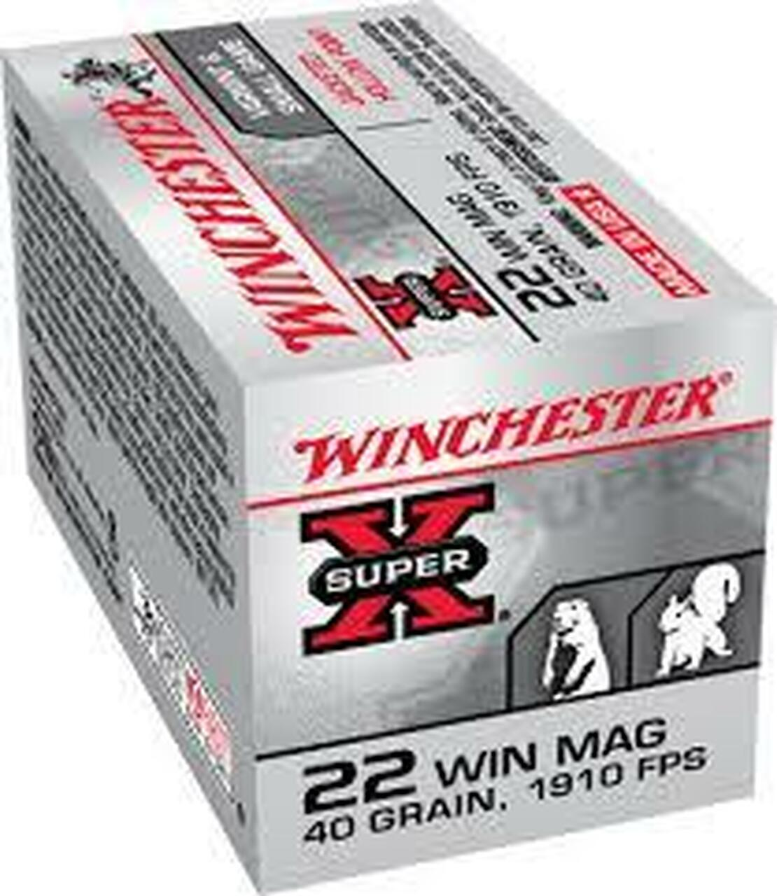 22 WMR Ammo