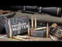 Hornady 300 WSM Ammunition H82208 Precision Hunter 200 gr ELD-X 20 rounds