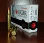 Hornady 204 Ruger Ammunition H83214 32 Grain V-MAX 20 Rounds